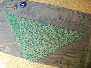 Shawl staked out to dry